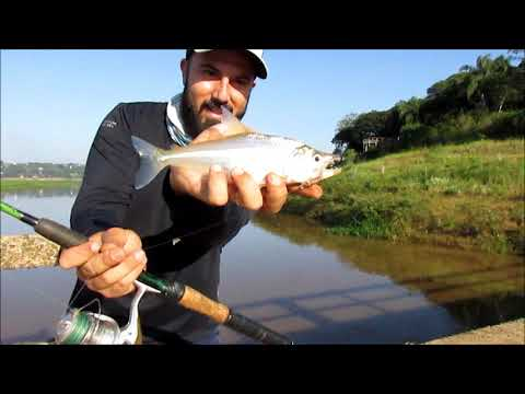 Quando a pescaria muda -Pontalete  Três Pontas sul de MG.