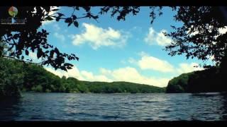Doğa Sesleri - Belgrad Ormanı'nda Göl Kenarı