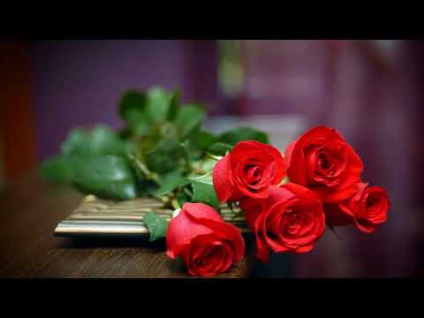 Love Story - ringtone