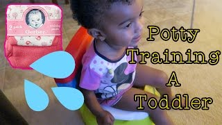 Vlog 470: Potty Training a Toddler