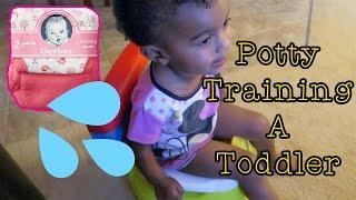 Vlog 470: Potty Training a Toddler