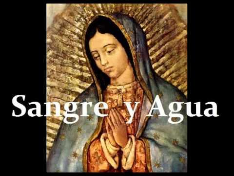 1 HORA CANCIONES CATOLICAS a MARIA la VIRGEN- Sangre y Agua- MUSICA CANTOS