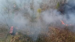 Pożar lasu w Janówce (gm. Byczyna). Podpalenie.
