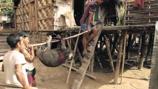 Travel Series : Living Indigenous of Bengal-MRO (demo)