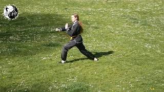 Shaolin Damo cane