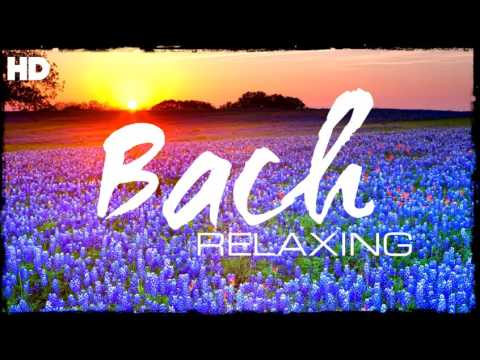 The Best Relaxing Classical Music Ever  Bach  Relaxation Meditation Focus Reading