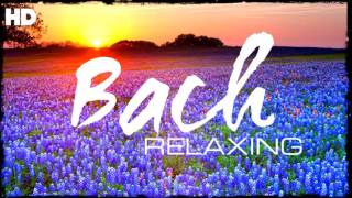The Best Relaxing Classical Music Ever By Bach - Relaxation Meditation