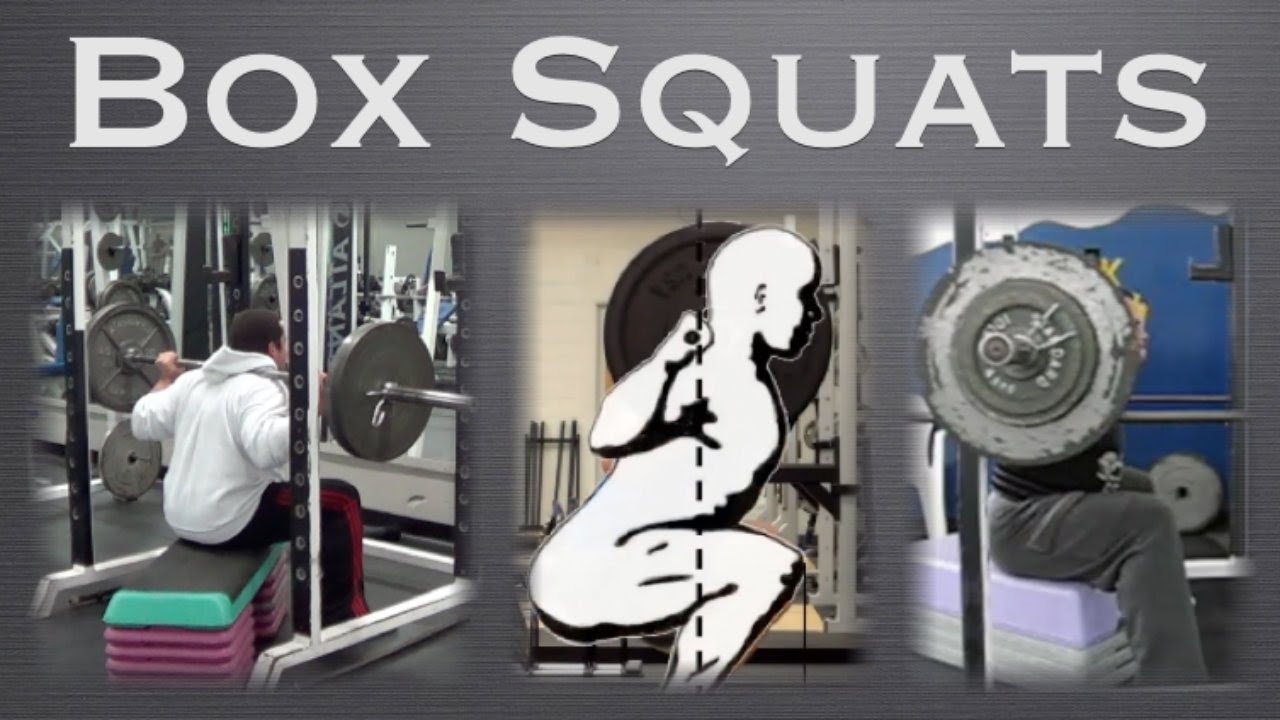 Box Squats Workout Benefits - YouTube