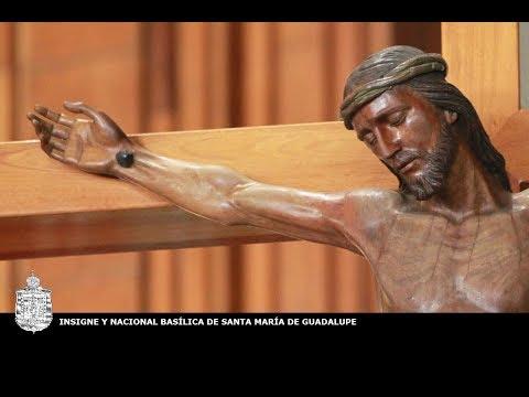 Peregrinación de la Arquidiócesis de San Luis Potosí, 10 de noviembre de 2017, 17:00 hrs.