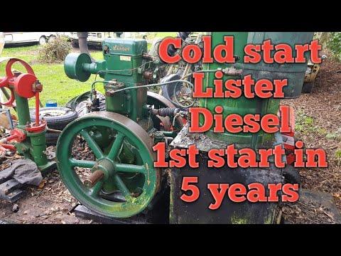 Lister CS Diesel Cold Start. 1st Start In 5 Years.