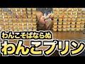 【新競技】わんこプリンチャレンジ
