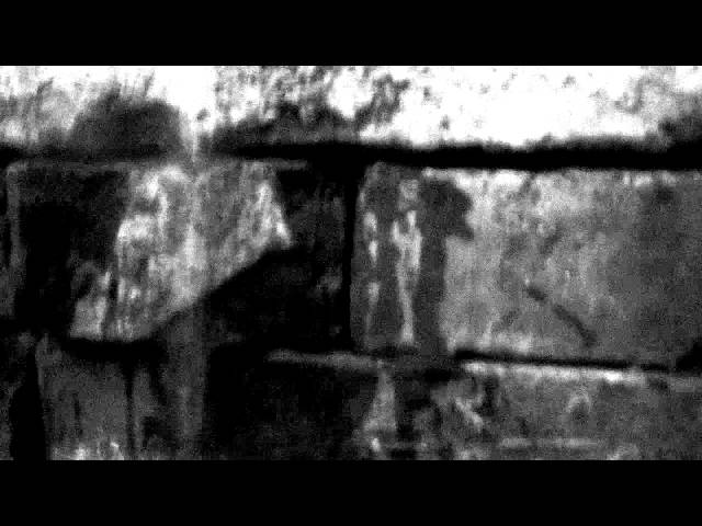 Finkseye - Different channels (Black version)