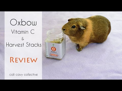 Review: Oxbow Harvest Stacks & Vitamin C for Guinea Pigs