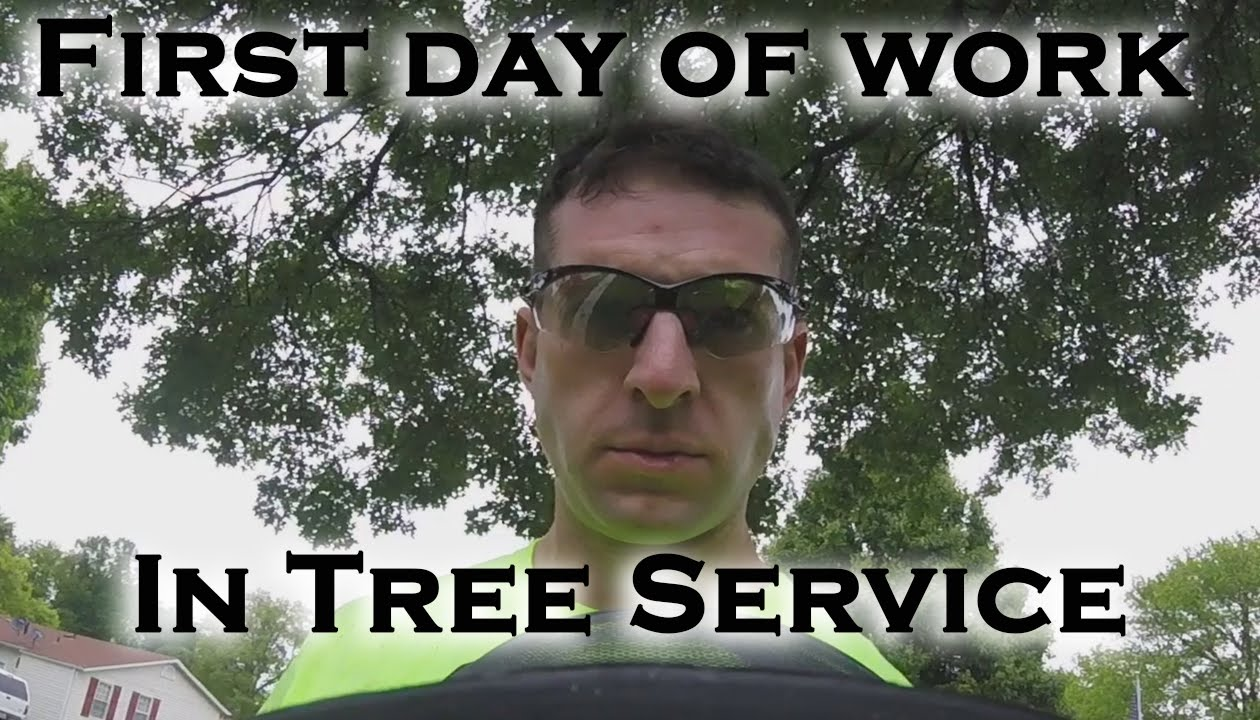 first day of work at the new job in tree service first day of work at the new job in tree service