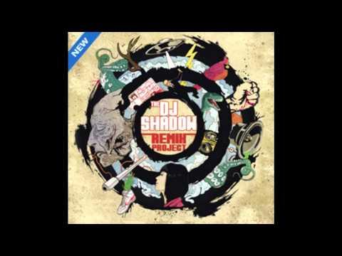 DJ Shadow -- Stem (Blank Image Mix)