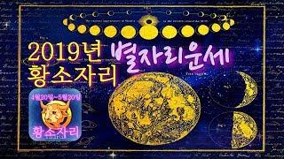 [별자리운세]2019년 황소자리 별자리 운세, 점성술.…