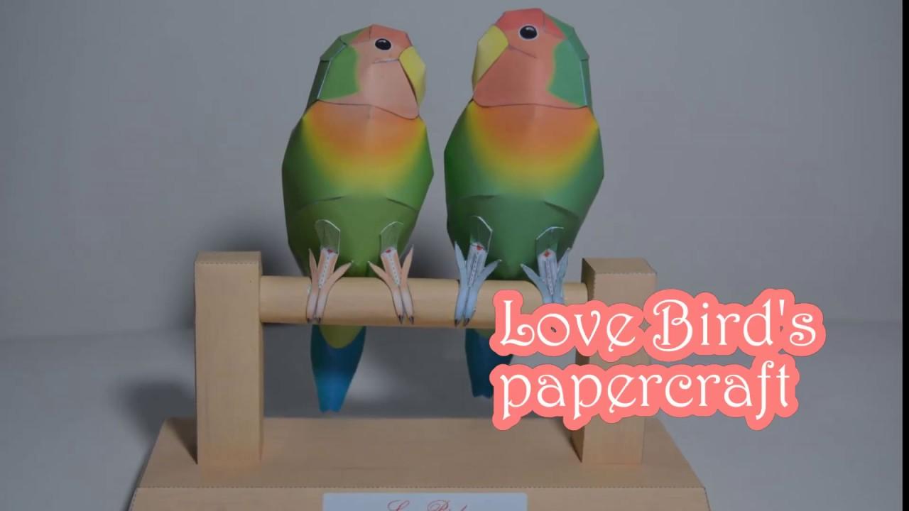 Love birds papercraft youtube love birds papercraft jeuxipadfo Images