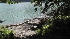 Sentier du lac de Gruyère