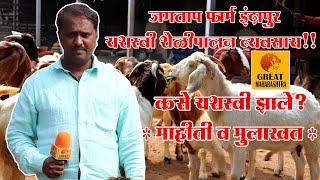 🐏 जगताप फार्म निरगुडे इंदापूर | यशस्वी शेळी पालन व्यवसाय | माहिती व मुलाखत | goat farm in Indapur