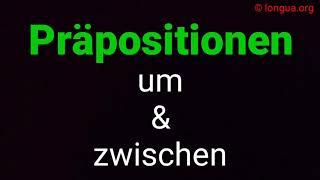Präposition: um, zwischen - Akkusativ, Dativ - A1, A2, B1, B2, Verwendung und Beispiele - longua.org