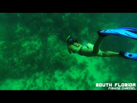 The Best Spearfishing Compilation   Florida Keys   27 min