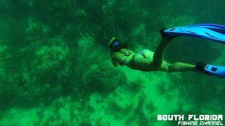 The Best Spearfishing Compilation | Florida Keys | 27 min