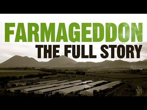 Farmaggedon -- The True Cost of Cheap Meat