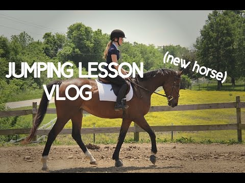 FIRST JUMPING LESSON WITH MY NEW HORSE