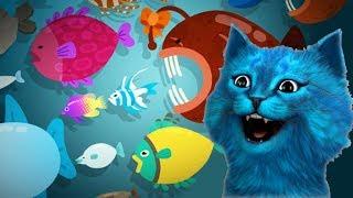 ПОДВОДНЫЙ КОТЕНОК РЫБОЛОВ поймал очень много рыбы / Симулятор маленького котенка The fishercat