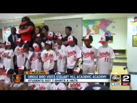 Oriole bird visits Steuart Hill Academic Academy