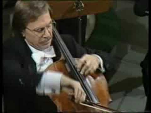HAYDN Cello Concerto in C Major Allegro molto Noras
