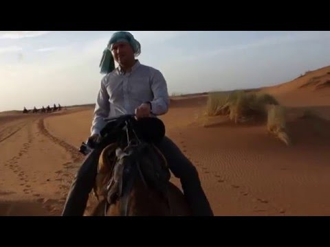 Fake Travel Guide: Sahara Desert on Camels