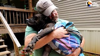 SICK Stray Dog Shows Up At Family's House And Stays Forever | The Dodo thumbnail