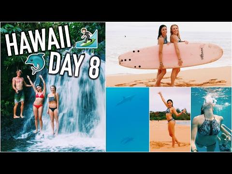 Surfing w/ Dolphins, Hidden Waterfalls, & Horse Feeding   HAWAII DAY 8