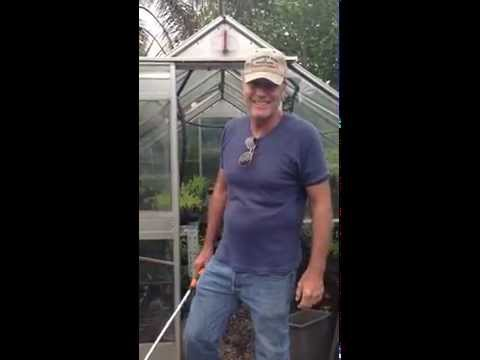 Robert Taylor  message from the greenhouse
