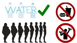 Lose Weight Fast   No Exercise Needed   My Reasons For Water Fasting   10 Straight Days, No Food!