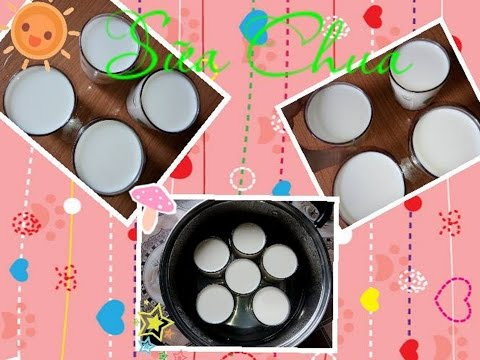 Sữa chua | Yogurt at home