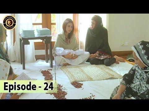 Iltija - Ep 24 | Affan Waheed - Tooba Siddiqui - Top Pakistani Dramas