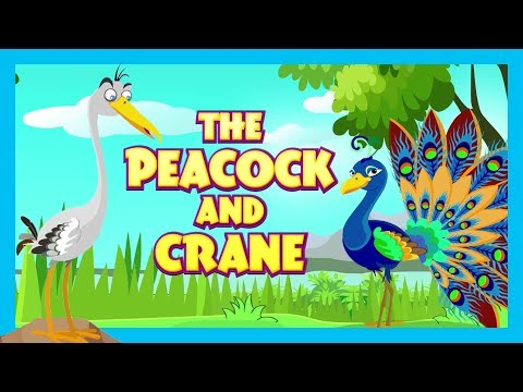 THE PEACOCK AND CRANE - MORAL STORY FOR KIDS || KIDS LEARNING STORIES