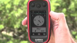 Training Multiple Dogs With The Garmin® Alpha™