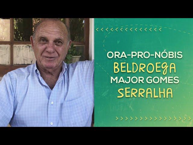 DESCOBRINDO AS PANC // João Neto // PorQueNão?