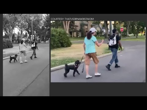 Woman in viral video in which she questions a Black man says his race had nothing to do with it from YouTube · Duration:  2 minutes 10 seconds