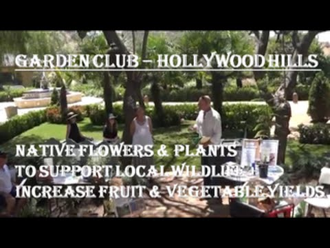 Garden Club | Native Flowers & Plants To Support Local Wildlife + Increase Fruit & Vegetable Yields