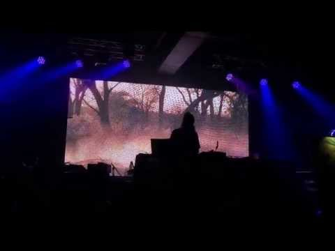 Re:Vision Chicago 2015 - Thriftworks Opener With Alex Grey Live Painting