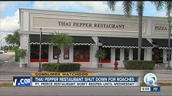 Thai Pepper Restaurant in Fort Pierce shut down