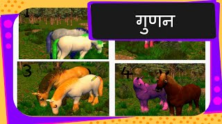 Maths - What is Multiplication - Hindi