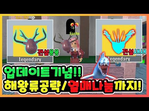 【시청자 참여 방송】💗킹피스 업데이트 해왕류/전설 열매 나눔 생방송💗 【킹레거시】【로블록스】 겜아빠TV 생방송