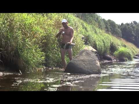 река тьма рыбалка видео