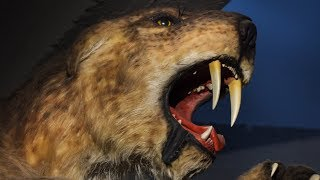 Baixar The Reason Why Saber-Toothed Tigers Went Extinct