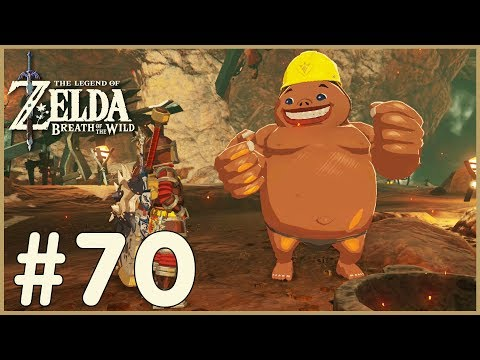 Zelda: Breath Of The Wild  Bridge Of Eldin 70